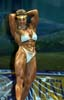 WPW-460 The 2001 Jan Tana Pro Bodybuilding Contest